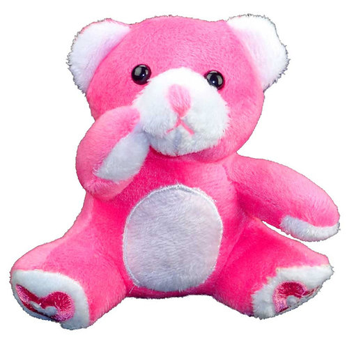 Plush Bear Toy Stuffed Animal Small