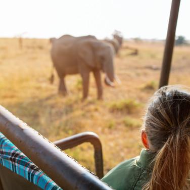 Adorable little girl in Kenya safari on