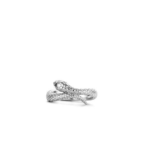 12160SI Ti Sento zilveren ring