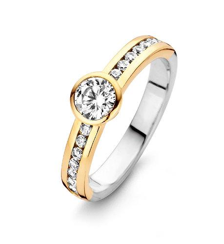 15080AY Moments zilveren ring verguld