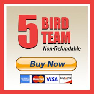 5 Bird Team Perch Fee