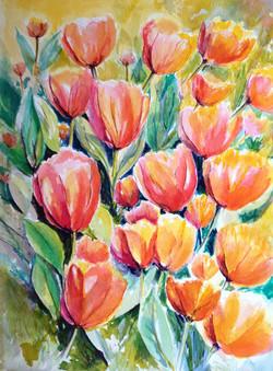 Tulip Garden - Watercolor