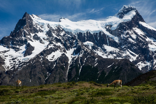 paine-grande-torre-del-paine-national-park-highest-peak