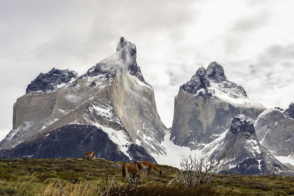 los-cuernos-lookout-dayhike-torres-del-paine-wildfire