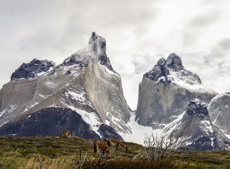 A  Fine Day-Hike selection of Torres del Paine