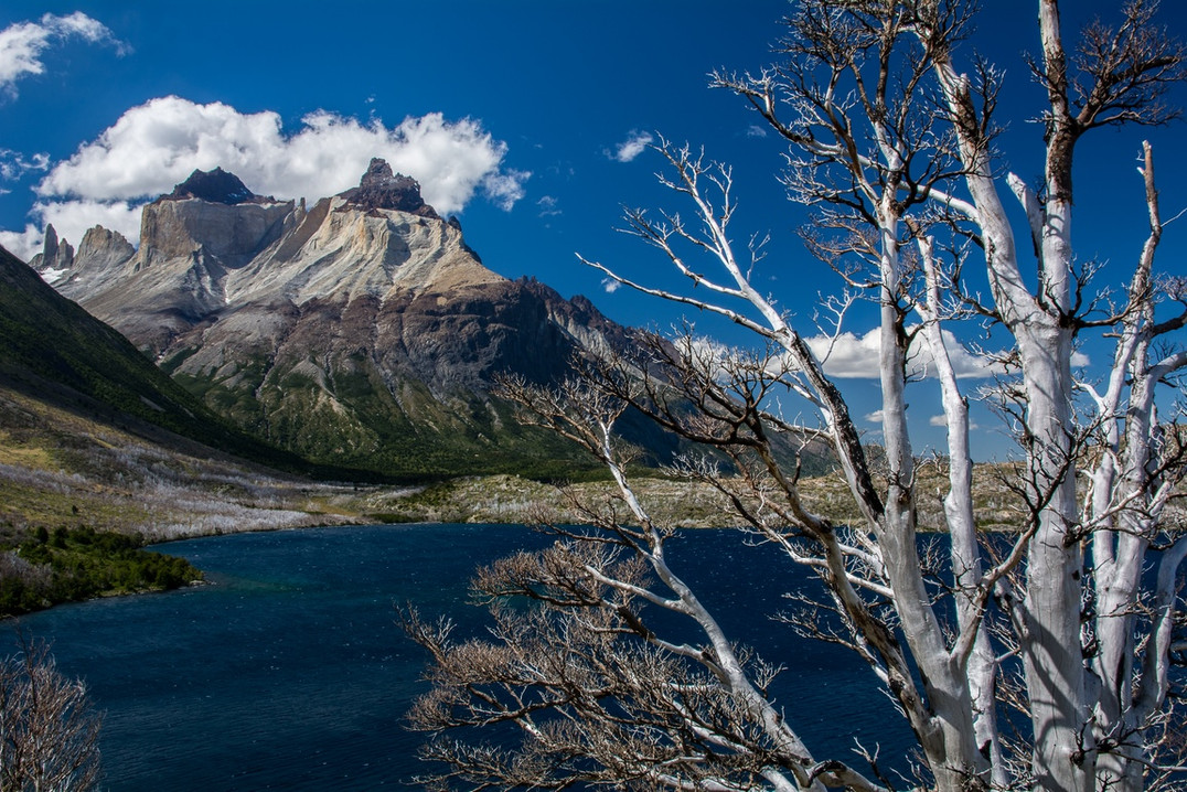 trail-to-los-cuernos-del-paine-fire-2012