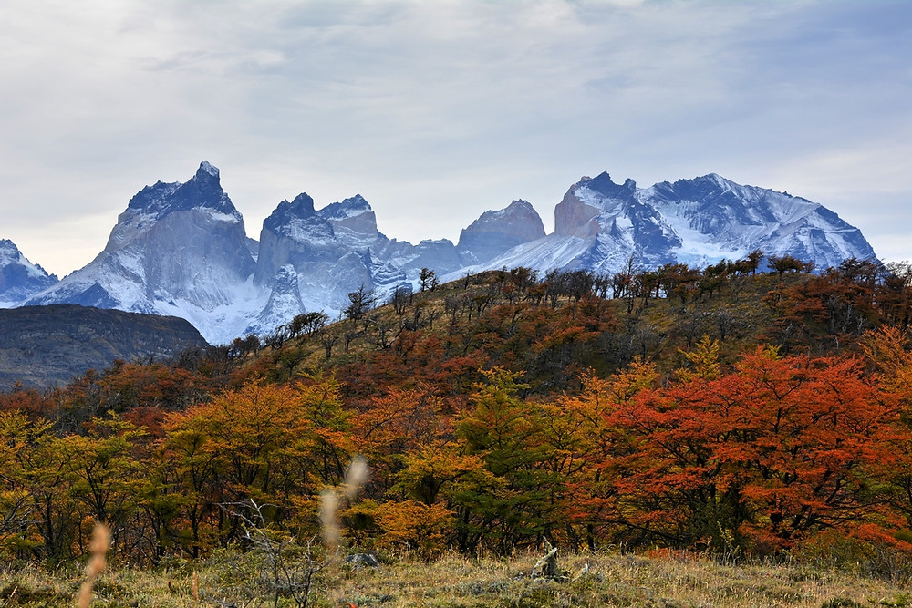 autumn-colours-chilean-patagonia-phography