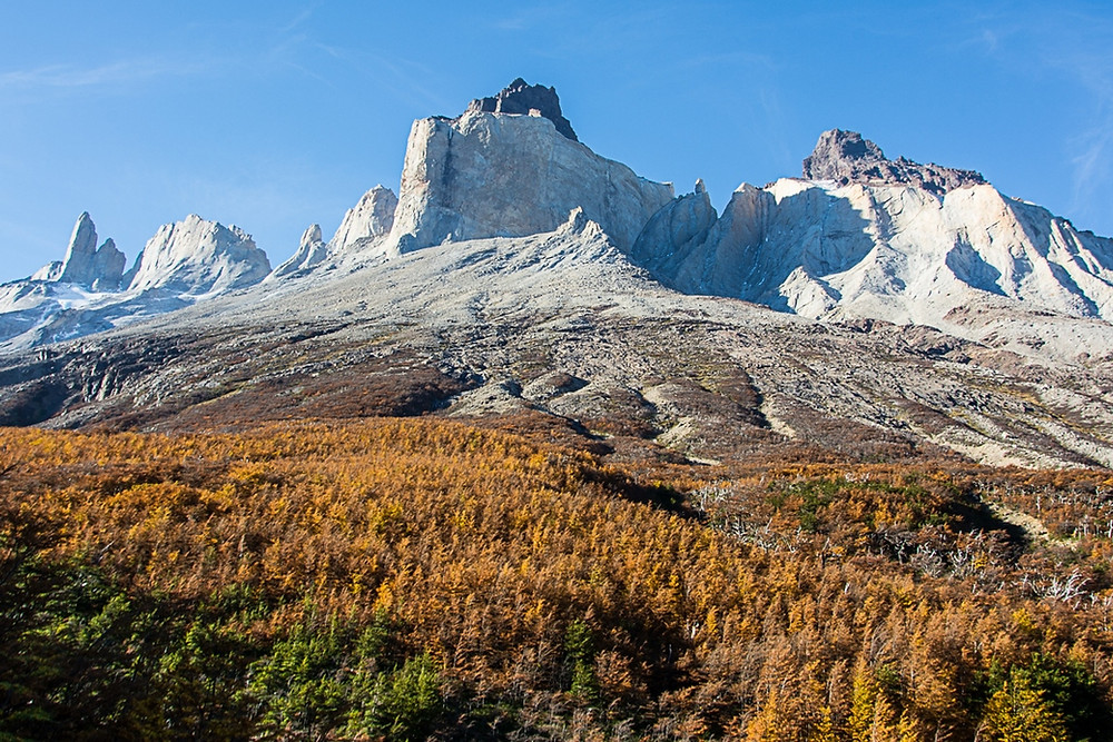 w-trek-autumn-colours-torres-del-paine-french-valley