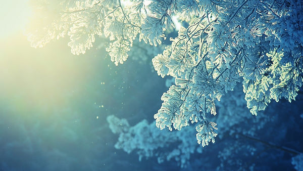 4929-anime-nature-snow-winter-cold-sunli
