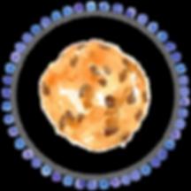 halifax, cookies, cookie, order cookies, halifax cookies, halifax catering, halifax food, halifax bakery, online cookie order, halifax market