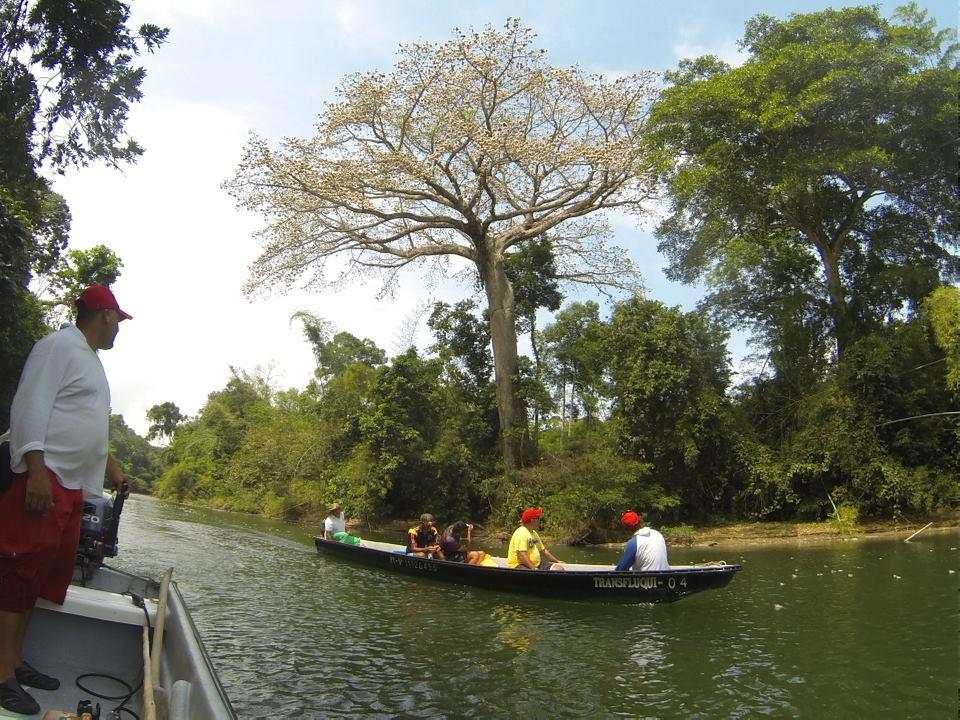 Rio La Miel