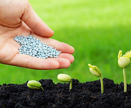 Fertilizantes%20Agroindustrial%20Velasco