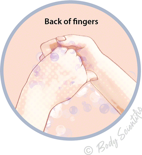 Back of fingers