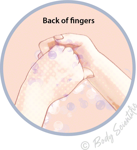 Back of fingers