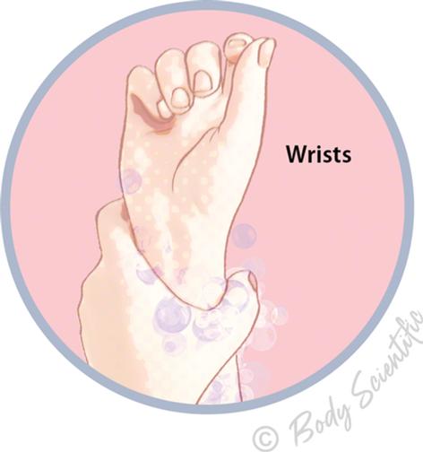 Wrists