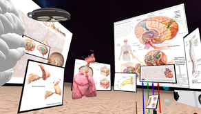 Is VR/AR the Future in Healthcare Education?