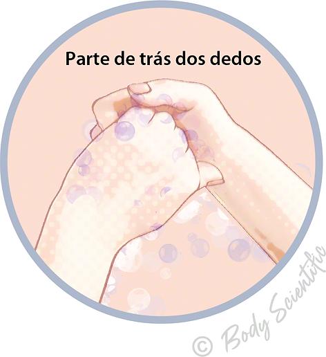 Parte de trás dos dedos