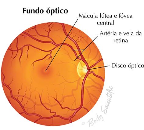 Fundo Óptico