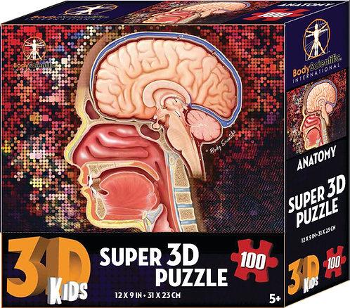 Super 3D Anatomy Puzzle - Brain