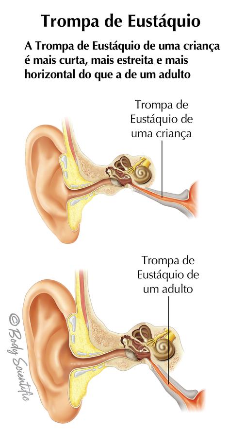 Trompa de Eustáquio