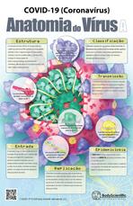 COVID-19 (Coronavírus) Anatomia do Vírus A
