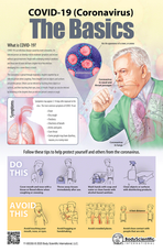 COVID-19 (Coronavirus) The Basics