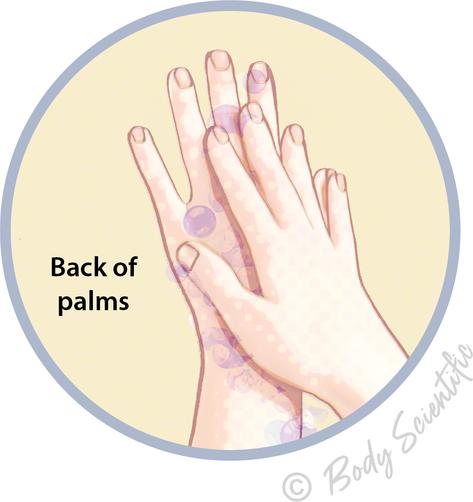 Back of palms