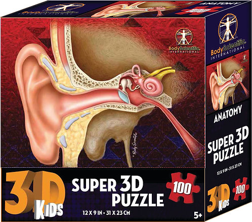 Super 3D Anatomy Puzzle - Ear