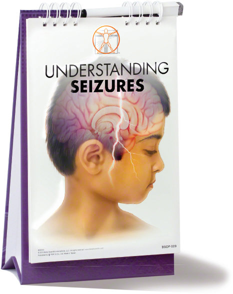 Understanding Seizures - Flip Book