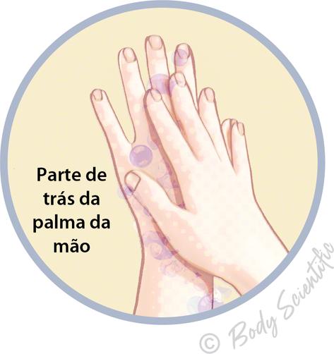 Parte de trás da palma da mão