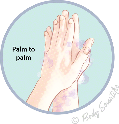 Palm to palm