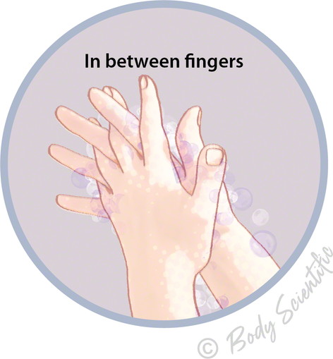 In between fingers