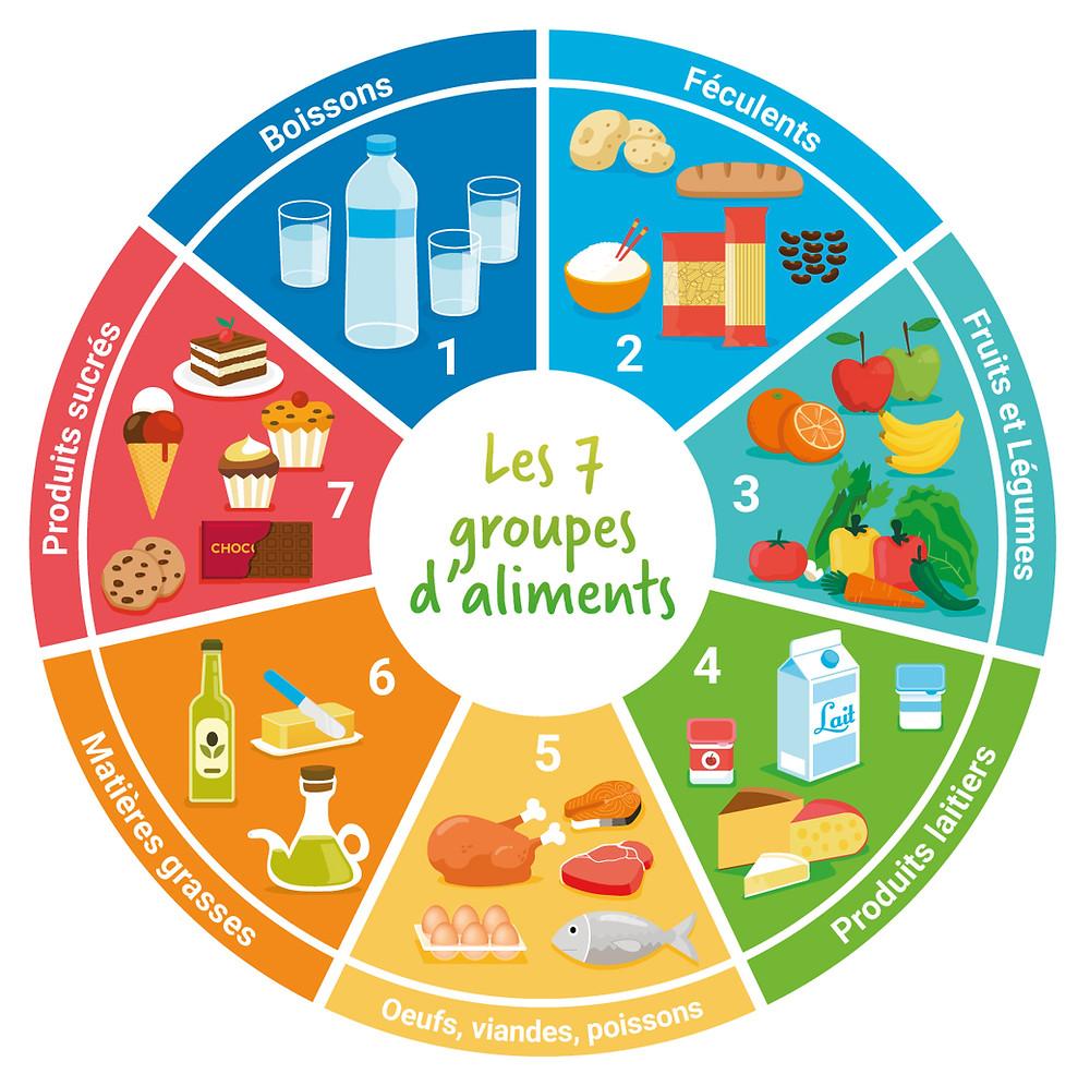 food illustration, water, eggs, olive oil, flat vector, vector, ice cream, lait, milk,