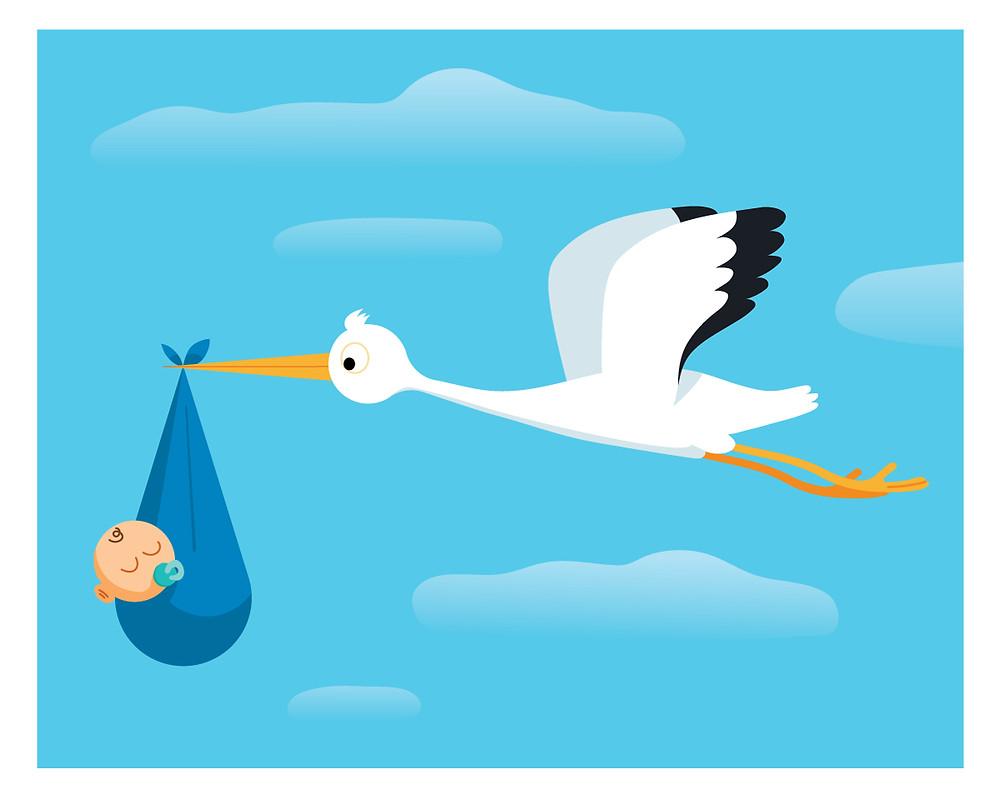 baby born, kids, child, illustration, flat vector, vector,