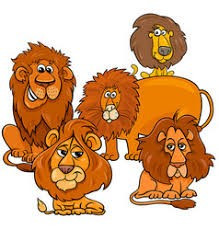 What does the word 'Lions' conjure up?  Africa?  Safari Parks? Rugby Union?  Wetherby?