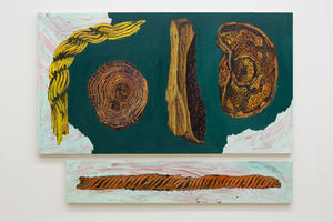 Two Ropes, Tree Trunk, Stone, and Shield (diptych)