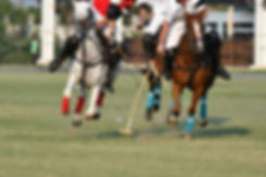 Polo player fighting in games..jpg