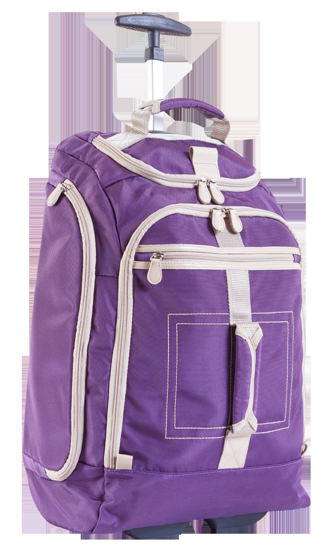 กระเป๋าเดินทางล้อลาก (แบบหรู)