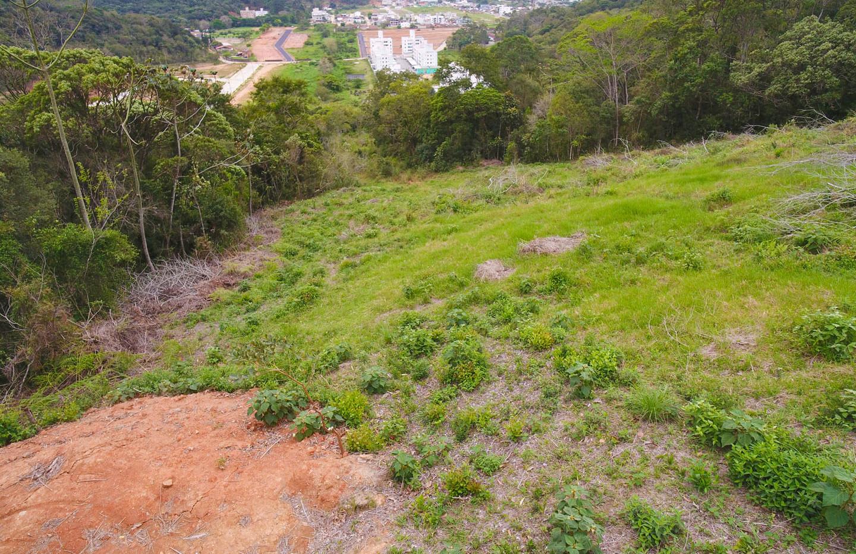 Terreno Cedro em Camboriu