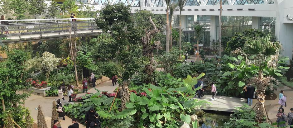 Seoul-Seoul botanic park