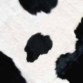 Cow (ELLA & VIV- Animal Kingdom)