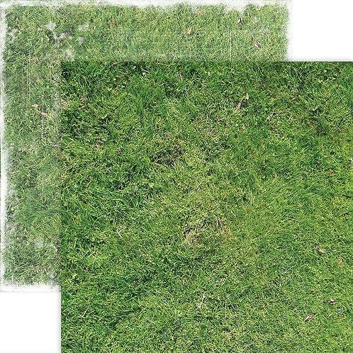 PAPER HOUSE - Grass