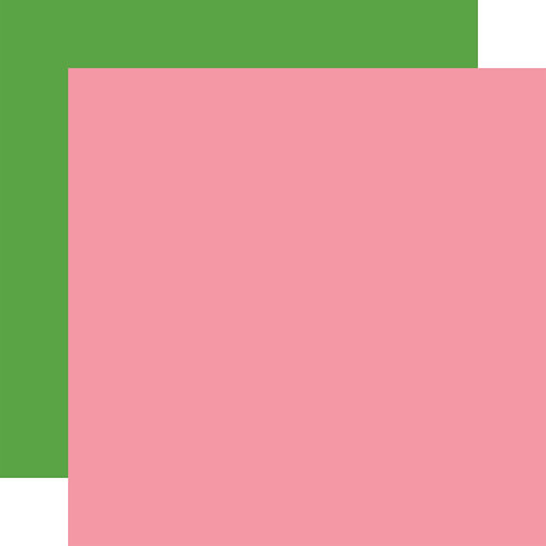 ECHO PARK Designer Solids - Pink/Green