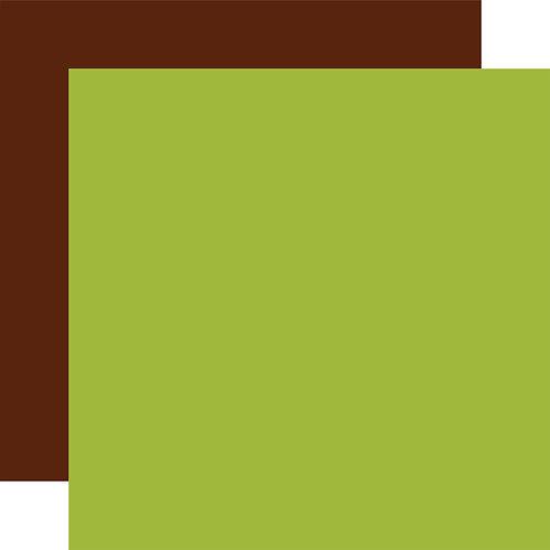 ECHO PARK Designer Solids - Green/Brown