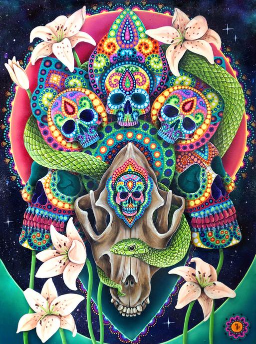 peinture-skull pit bull-siteweb.jpg