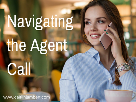 Querying 101: The Agent Call