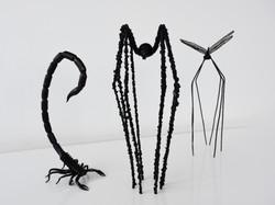 Scorpion & spider & dragonfly
