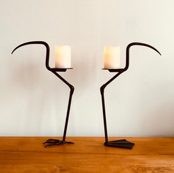 My fire birds