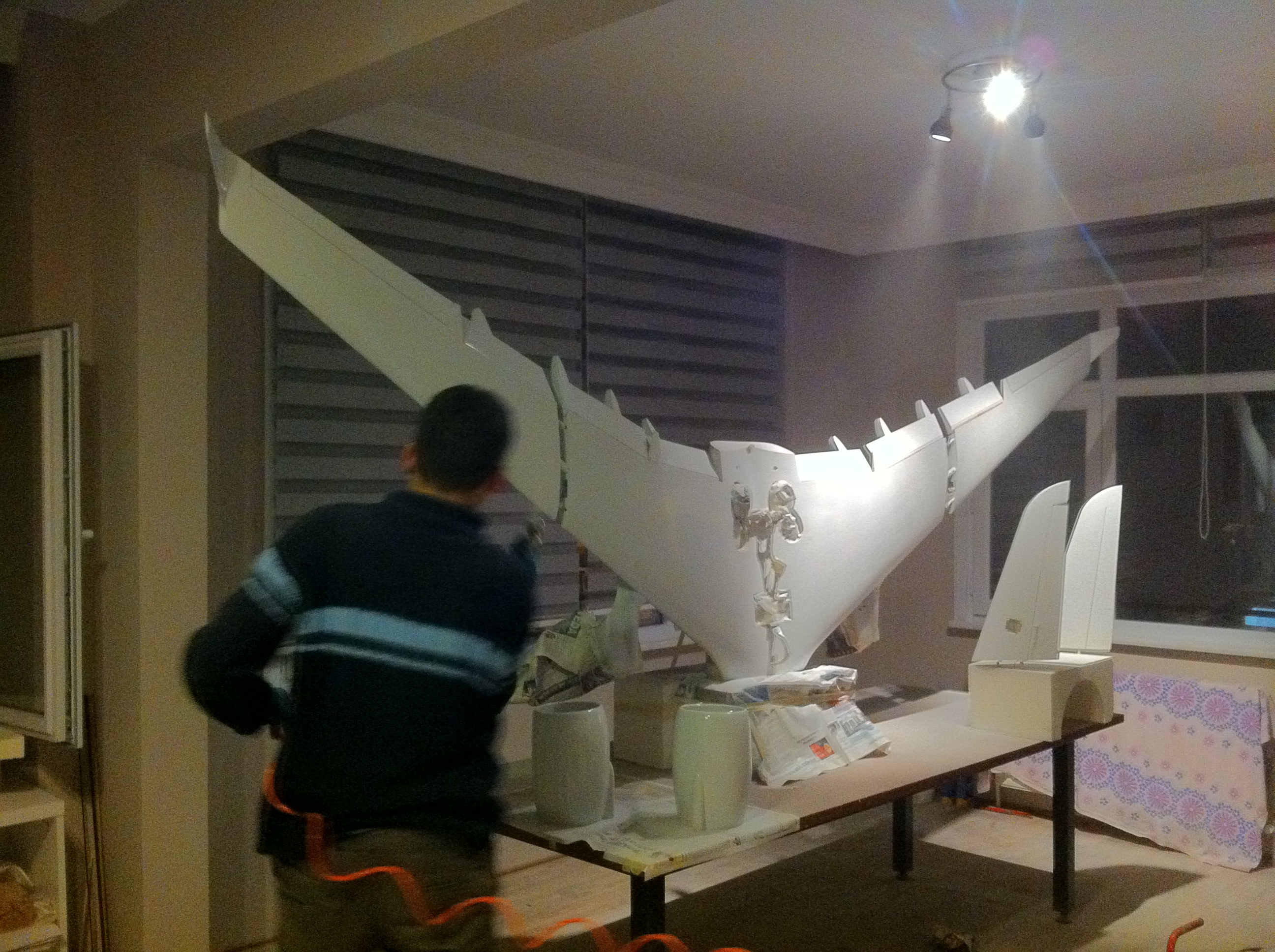 first primer of wing