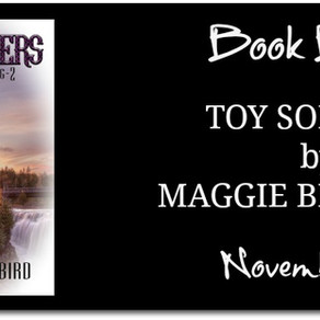 Release Blitz & Giveaway: Toy Solders by Maggie Blackbird